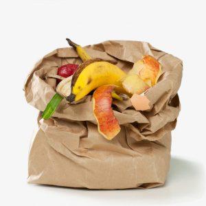 organic_sac_papier_gry